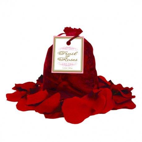 Trail Of Roses Petalos Rojos. Trail Of Roses Red Petals