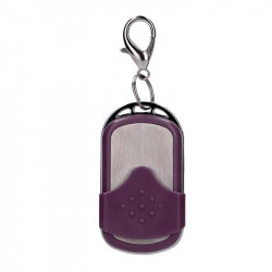 oeuf 10 vitesses gros vibromasseur violet