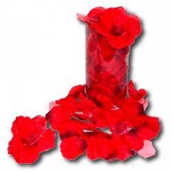 Pétales de rose rouges