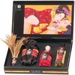 Shunga tenderness and passion collection