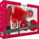 Kit JFY nº4 Caja de Lujo Rojo
