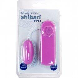 Arises pink vibrating bullet