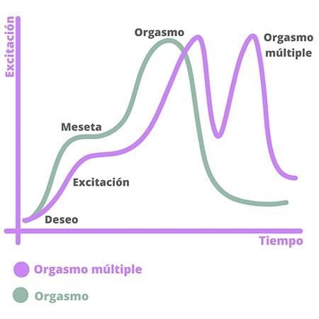 Cómo funciona la respuesta sexual