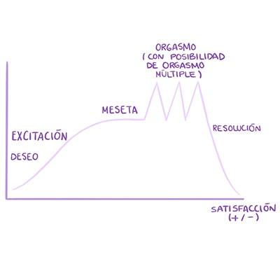 Gráfico de la respuesta sexual femenina
